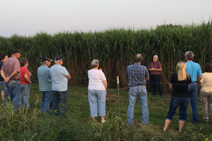 Renew Biomass Hosts Twilight Horticultural Tour