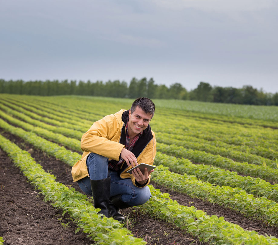 Uncertainties of production agriculture