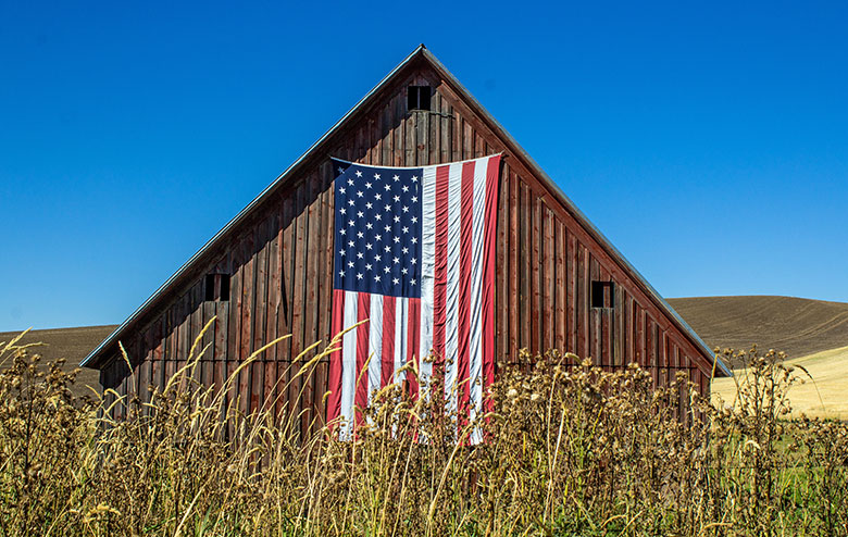 MFiber is Inspired By Rural America