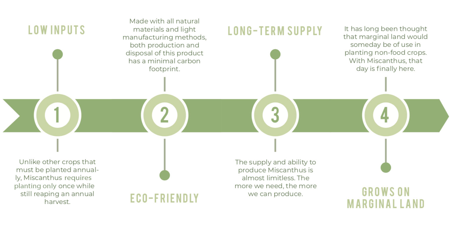 MFiber Benefits of Miscanthus Infographic
